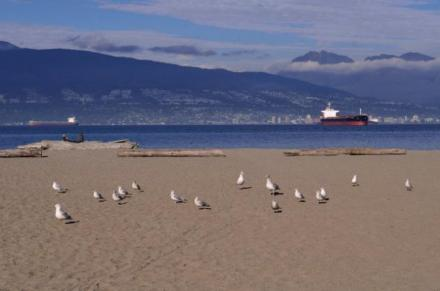 1a425020-c659-11e4-ae11-b3053d80551f_05-Canada-Vancouver-LeadImage01