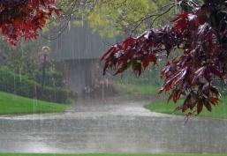monsoon-header