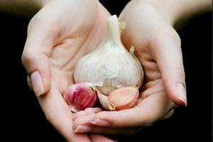 Garlic-jpg
