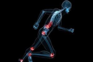 Skeleton-jpg